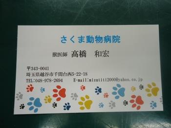 DSC03194.JPG